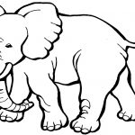 Animal Coloring Pages | Free Download Best Animal Coloring Pages On   Free Coloring Pages Animals Printable