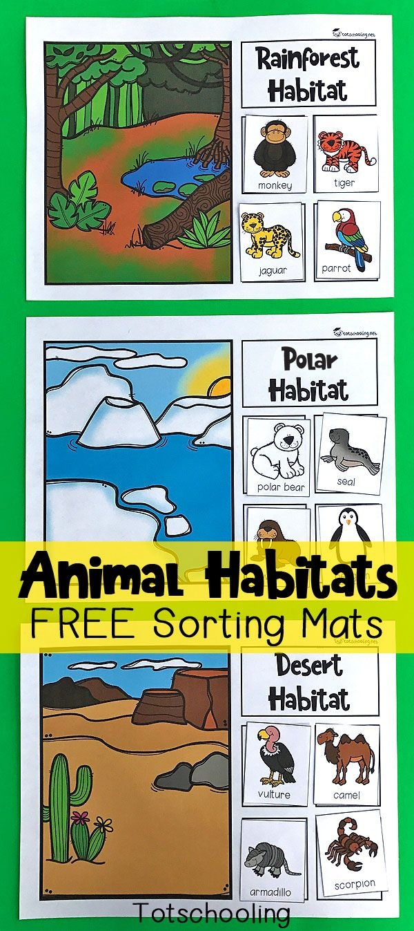 Animal Habitats Sorting Mats | Free Printables | Animal Habitats - Free Printable Worksheets Animal Habitats