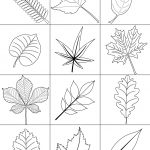 Autumn Leaves Coloring Page | Free Printable Coloring Pages   Free Printable Pictures Of Autumn Leaves