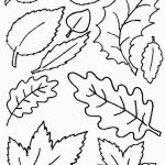 Coloring Ideas : Free Printable Leaf Coloring Pages Fall Leaves And   Free Printable Pictures Of Autumn Leaves