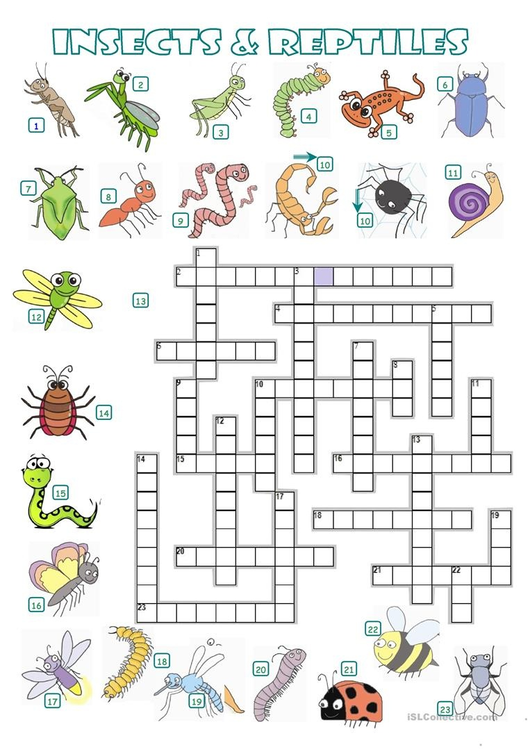 Crossword - Insects And Reptiles Worksheet - Free Esl Printable - Free Printable Reptile Worksheets
