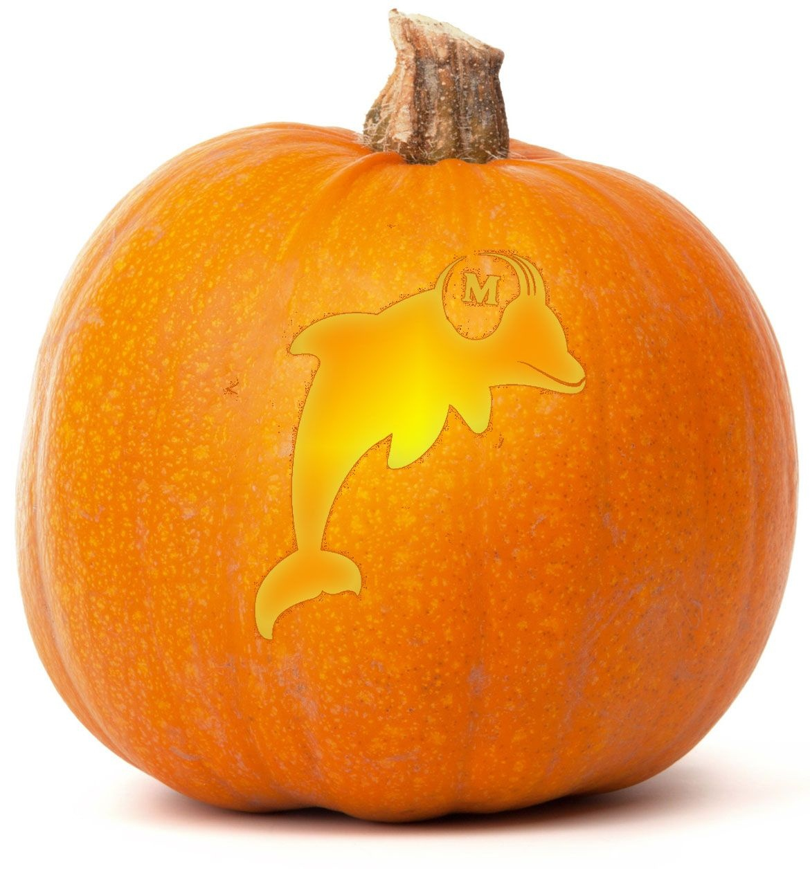 Download Our Free Miami Dolphins Pumpkin Carving Template. Browse - Printable Nfl Pumpkin Carving Patterns Free