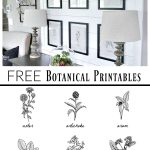 Free Botanical Prints | Bloggers' Best Diy Ideas | Diy Home Decor   Free Black And White Printable Art