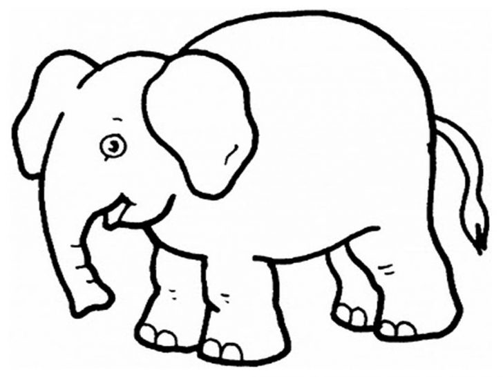 Free Printable Elephant Pictures