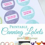 Free Printable Canning Labels   Free Printable Jam Labels
