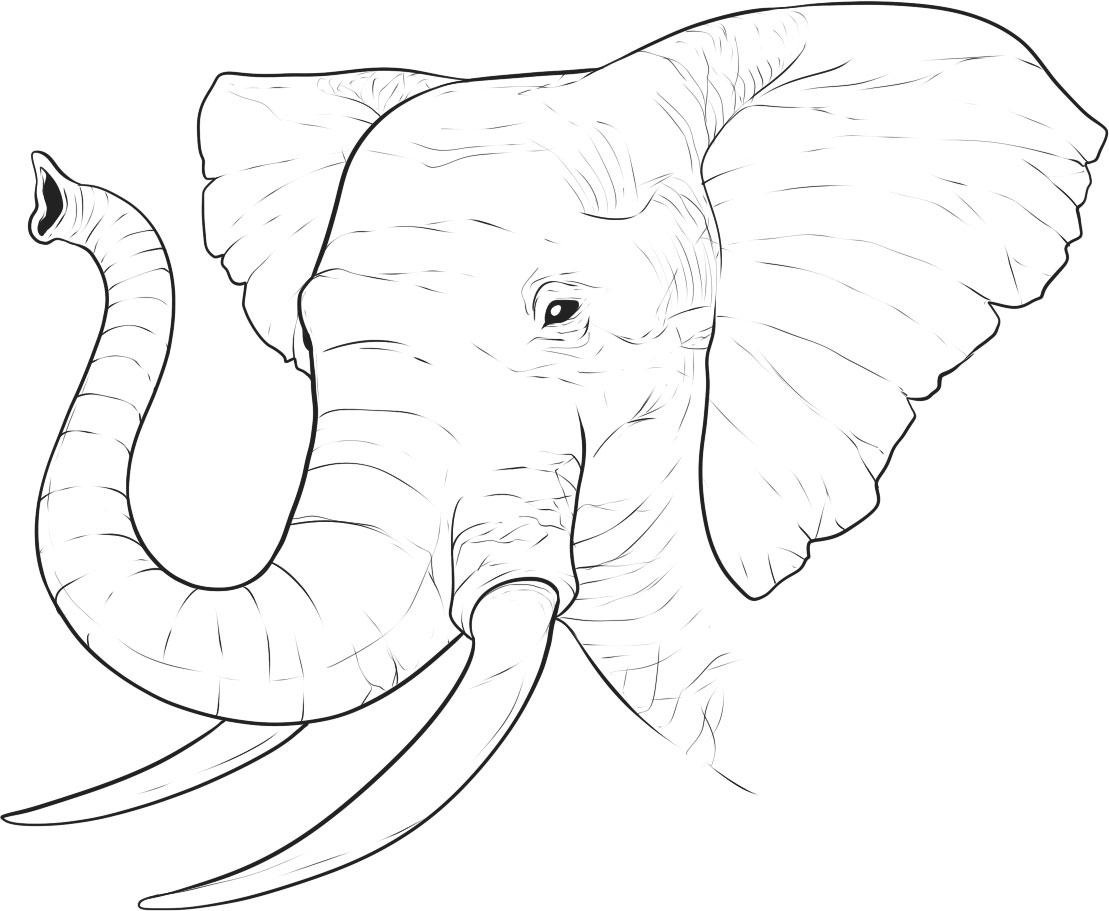 Free Printable Elephant Coloring Pages For Kids - Free Printable Elephant Images