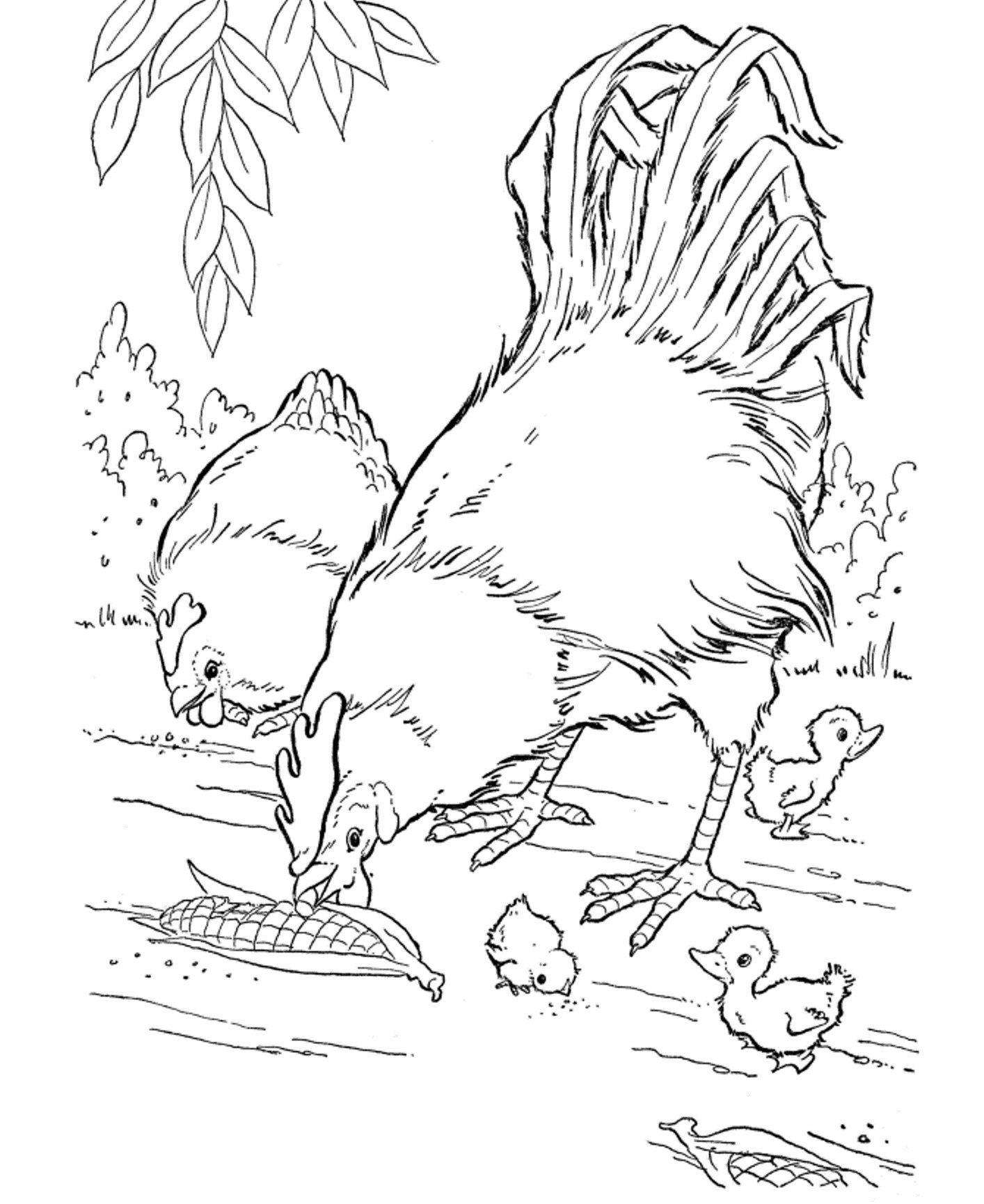 Free Printable Farm Animal Coloring Pages For Kids | Adult Coloring - Free Printable Farm Animal Pictures