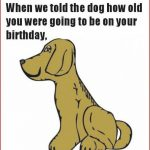 Free Printable Funny Birthday Cards For Adults   Printable Cards   Free Printable Funny Birthday Cards For Adults