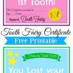 Free Printable Tooth Fairy Certificate   Tooth Fairy Ideas   Tooth   Free Printable Tooth Fairy Certificate