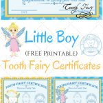 Free Printable Tooth Fairy Certificates | Kid's Boy/girl Stuff   Tooth Fairy Stationery Free Printable