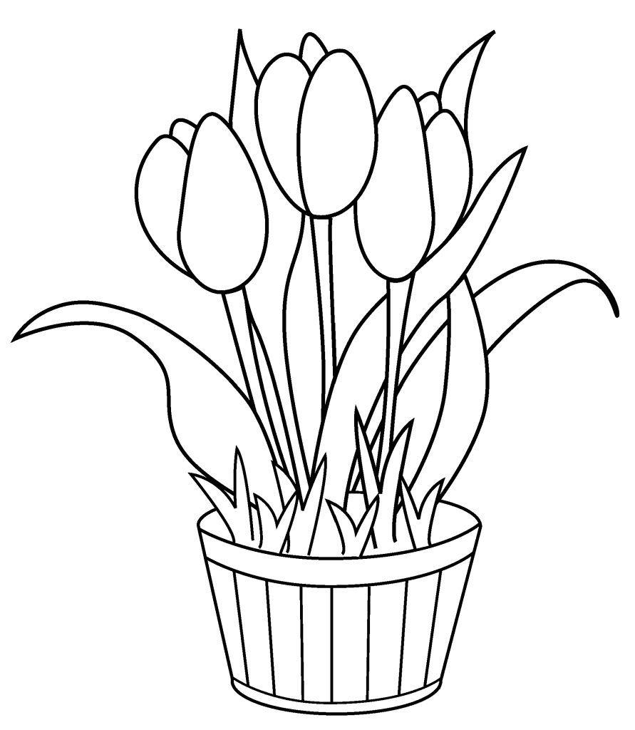 Free Printable Tulip Coloring Pages For Kids - Free Printable Tulip Coloring Pages
