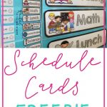 Freebie Schedule Cards | Classroom (When I Go Back :) | Preschool   Free Printable Classroom Labels For Preschoolers