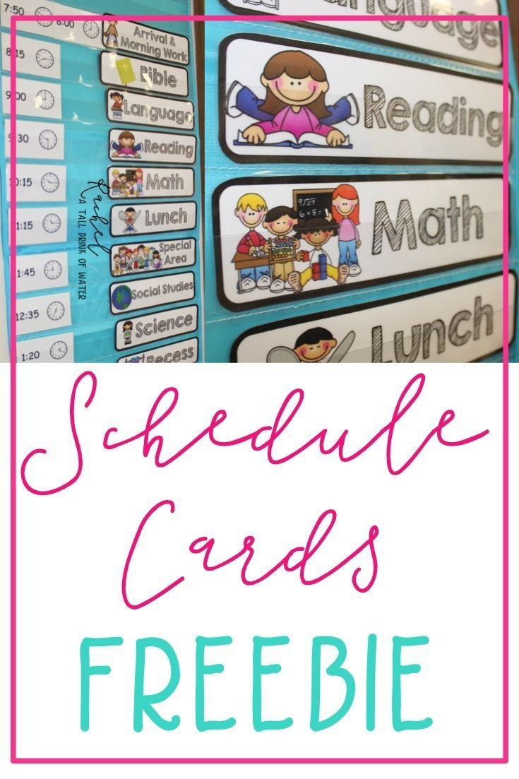 Freebie Schedule Cards | Classroom (When I Go Back :) | Preschool - Free Printable Classroom Labels For Preschoolers
