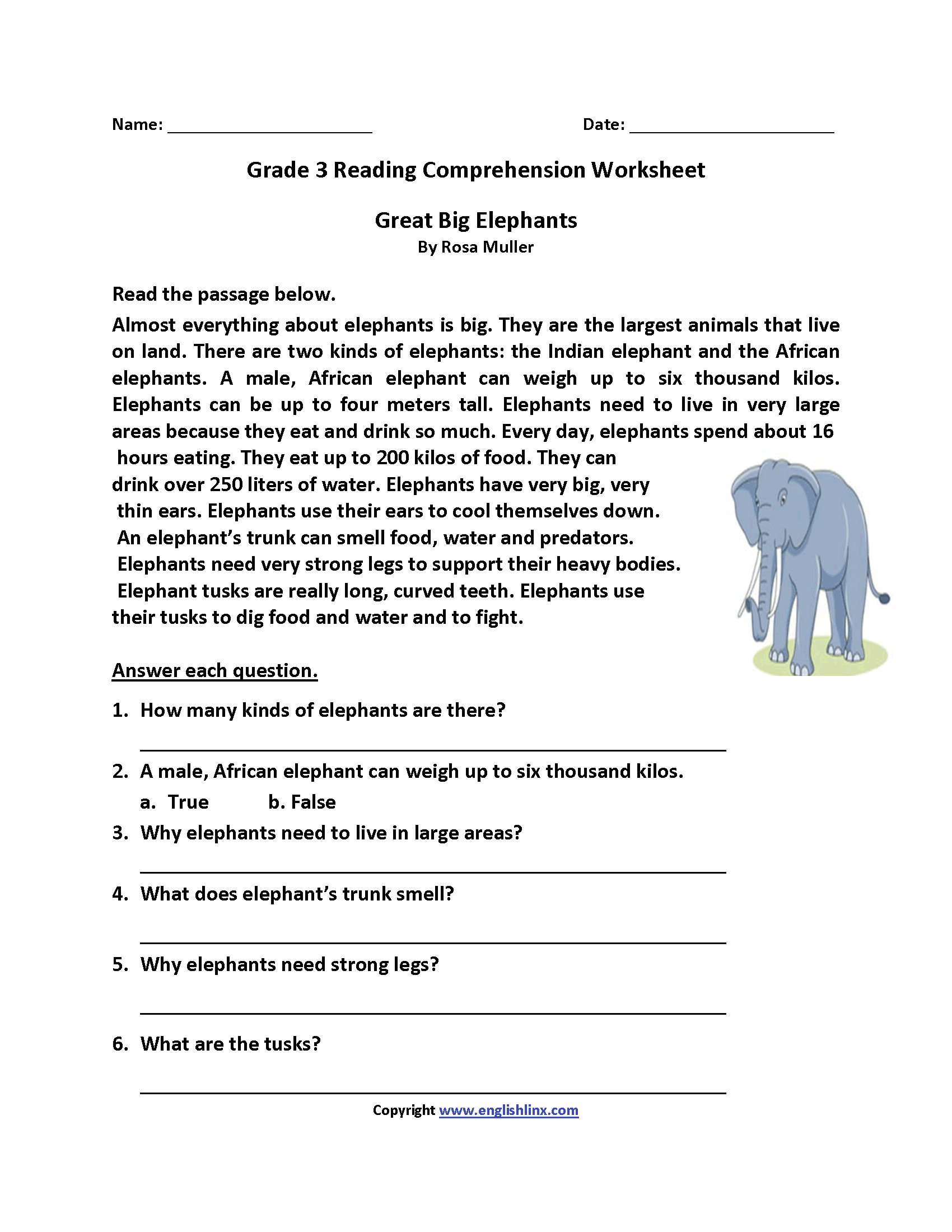 Great Big Elephants Third Grade Reading Worksheets | Board | Reading - Third Grade Reading Worksheets Free Printable