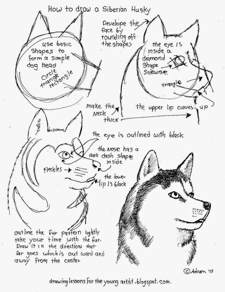 Free Printable Drawing Worksheets