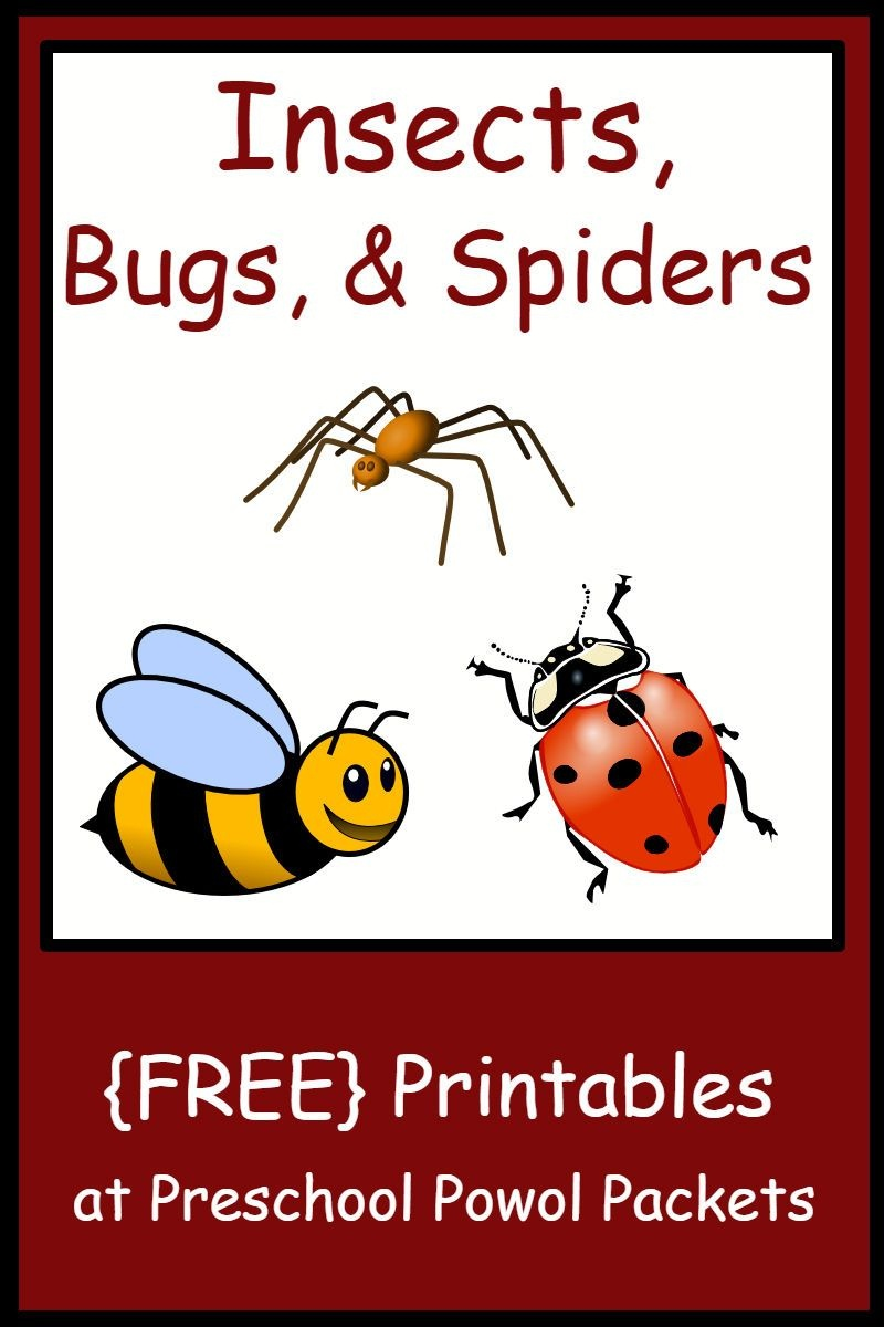 Insect, Bug, & Spider Themed {Free} Preschool Printables | Teaching - Free Printable Worm Worksheets