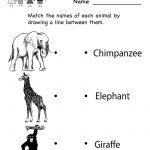 Kindergarten Zoo Animal Worksheet Printable | Worksheets (Legacy   Free Printable Zoo Worksheets