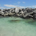 Panama City Beach On A Dime: Free Admission To St. Andrew's State Park   Free Printable Coupons For Panama City Beach Florida