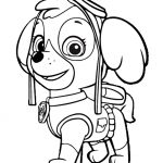 Paw Patrol Coloring Pages   Best Coloring Pages For Kids   Free Printable Paw Patrol Coloring Pages
