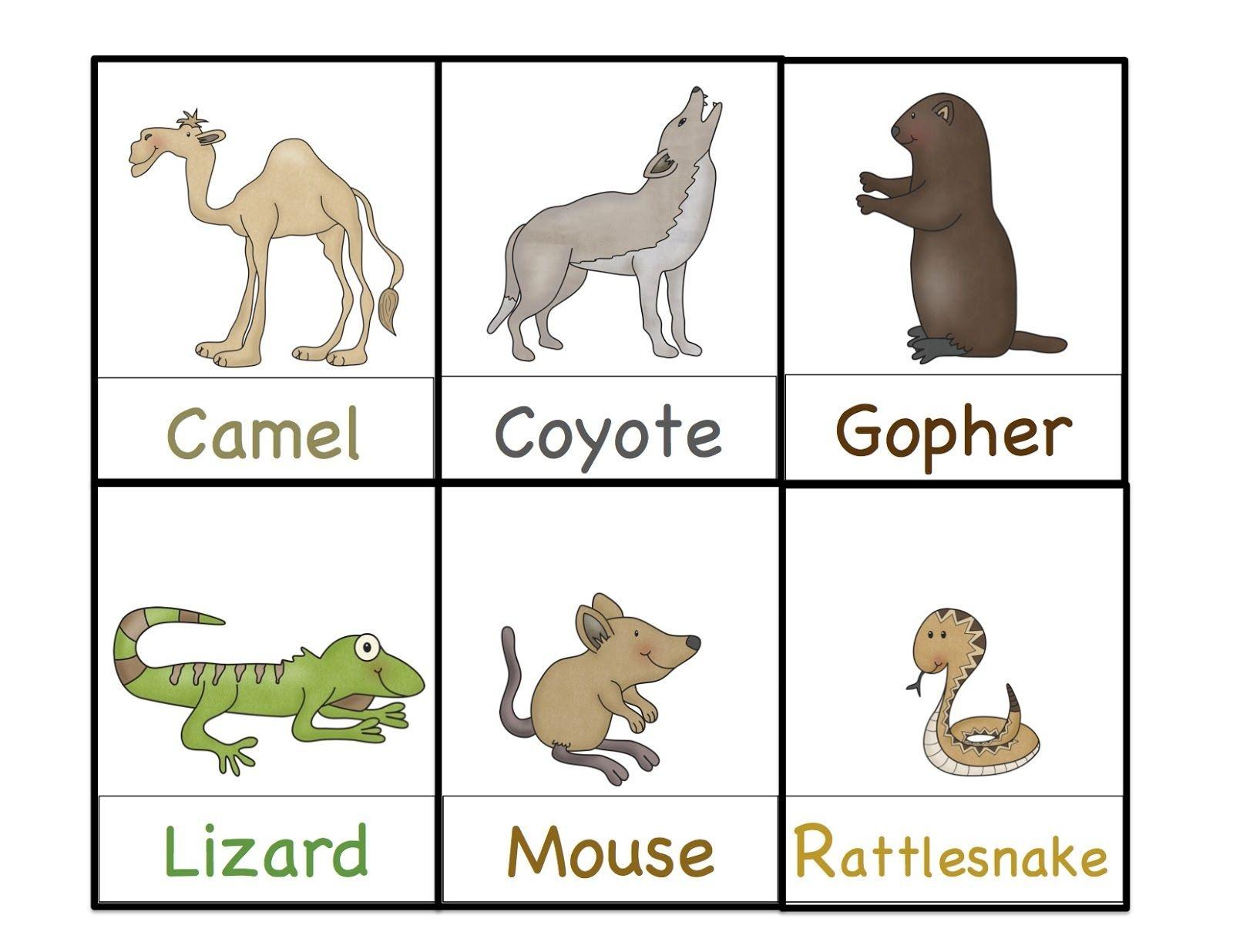 Preschool Printables: Desert Animals Printable   Themed Lesson Plan - Free Printable Desert Animals