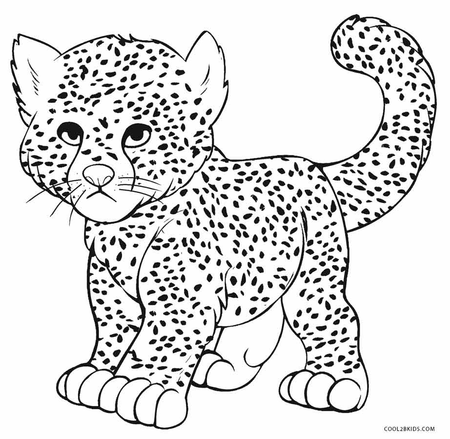 Printable Cheetah Coloring Pages For Kids | Cool2Bkids - Free Printable Cheetah Pictures
