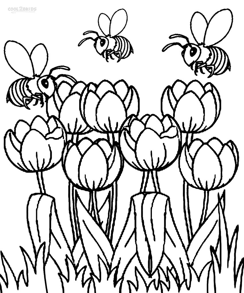 Printable Tulip Coloring Pages For Kids   Cool2Bkids - Free Printable Tulip Coloring Pages