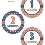 Super Cute And Free Printable Animal Themed Baby Monthly Milestone   Free Printable Baby Month Stickers