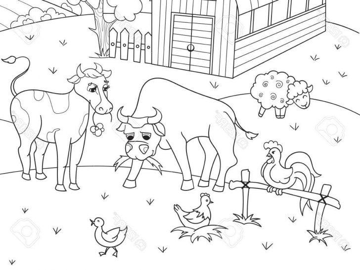 Free Printable Farm Animal Pictures