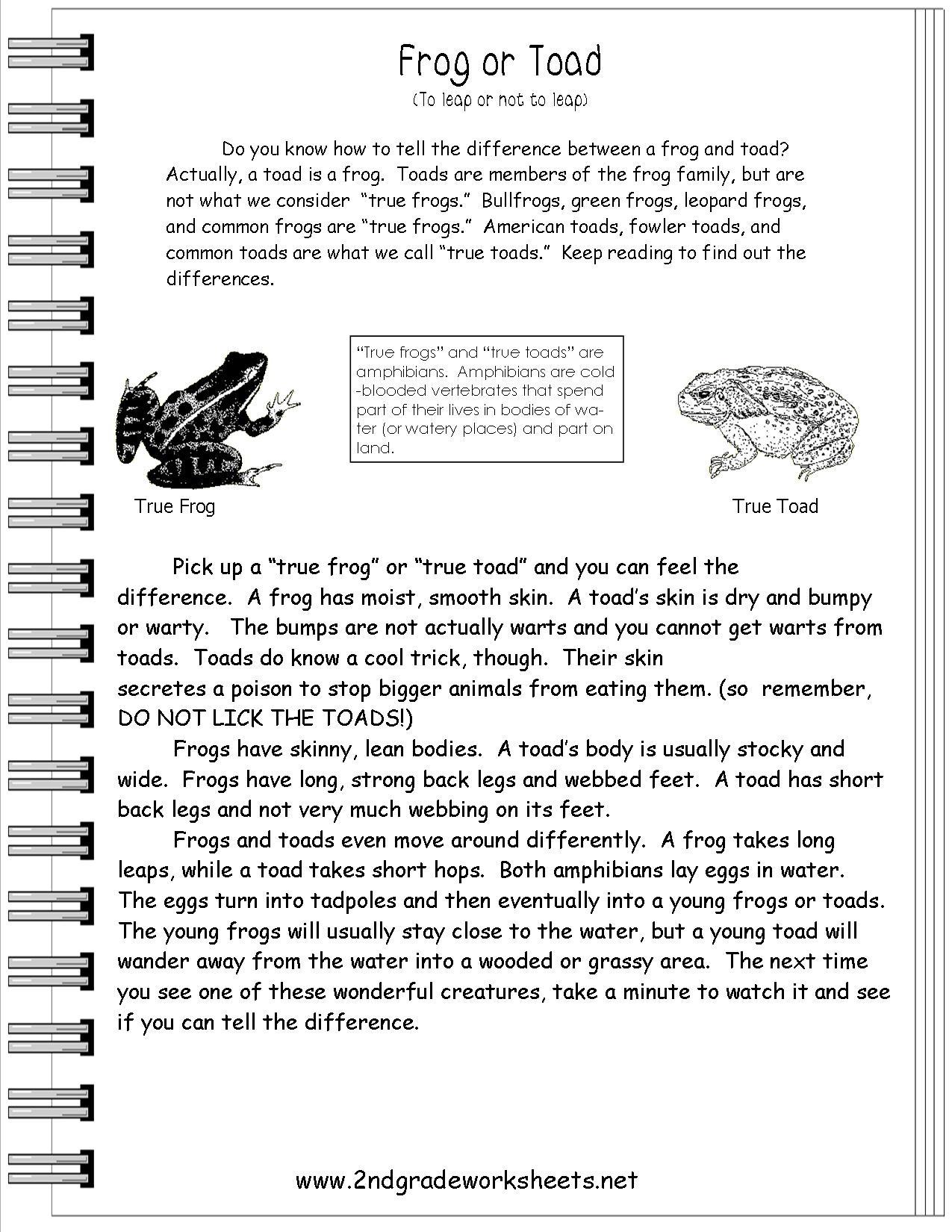 Worksheet : Free Printable Short Stories With Comprehension - Free Printable Short Stories For 2Nd Graders