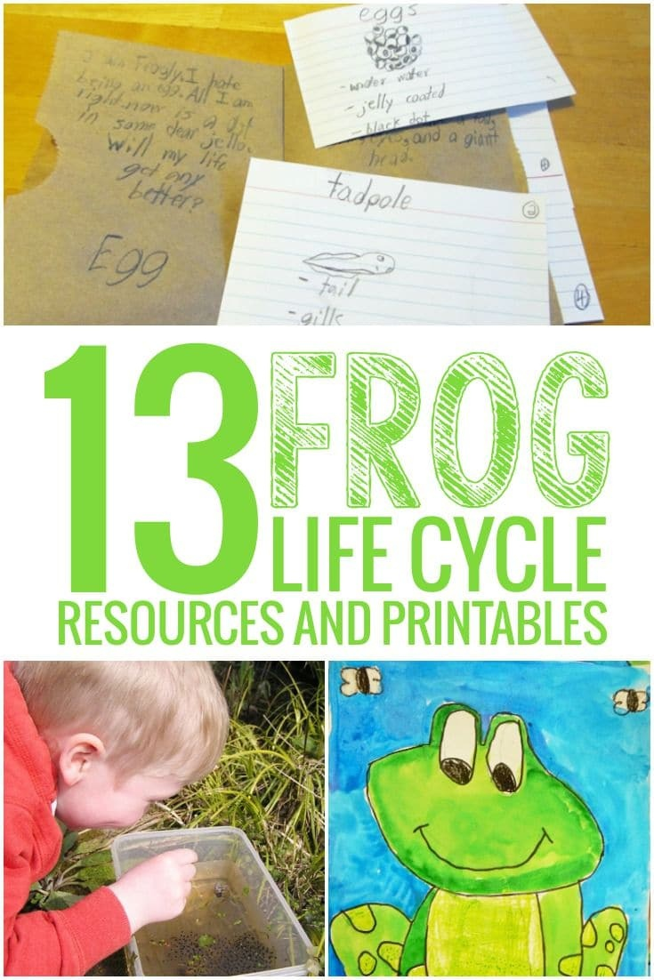 13 Frog Life Cycle Resources And Printables - Teach Junkie - Life Cycle Of A Frog Free Printable Book