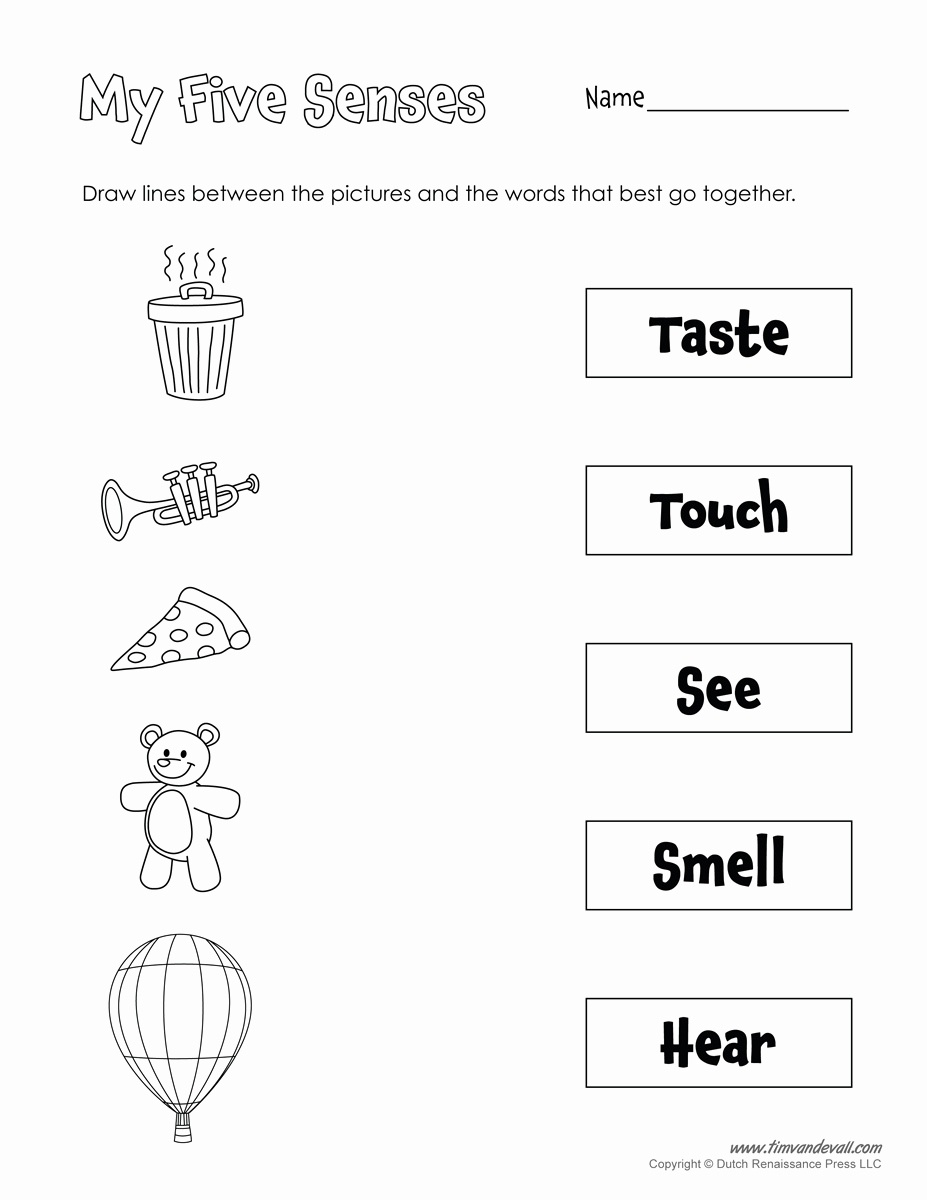 20 Free Printable 5 Senses Worksheets For Kindergarten - Free Printable Worksheets Kindergarten Five Senses