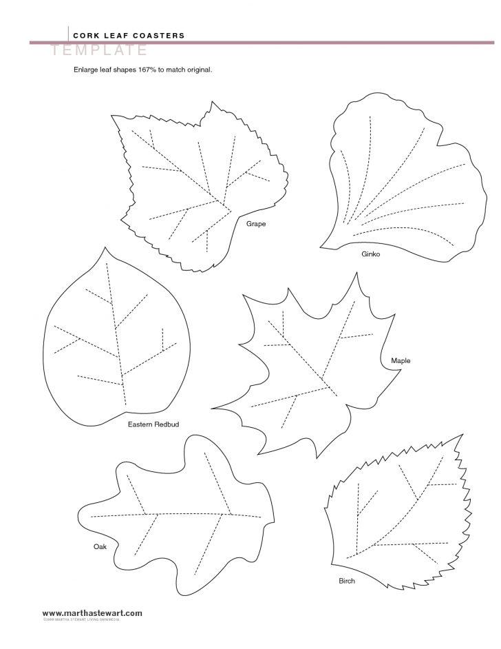 Free Printable Leaf Template