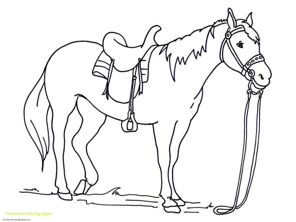 Coloring Page ~ Free Horse Coloring Pictures Horses Pagesintable - Free Printable Horse Coloring Pages