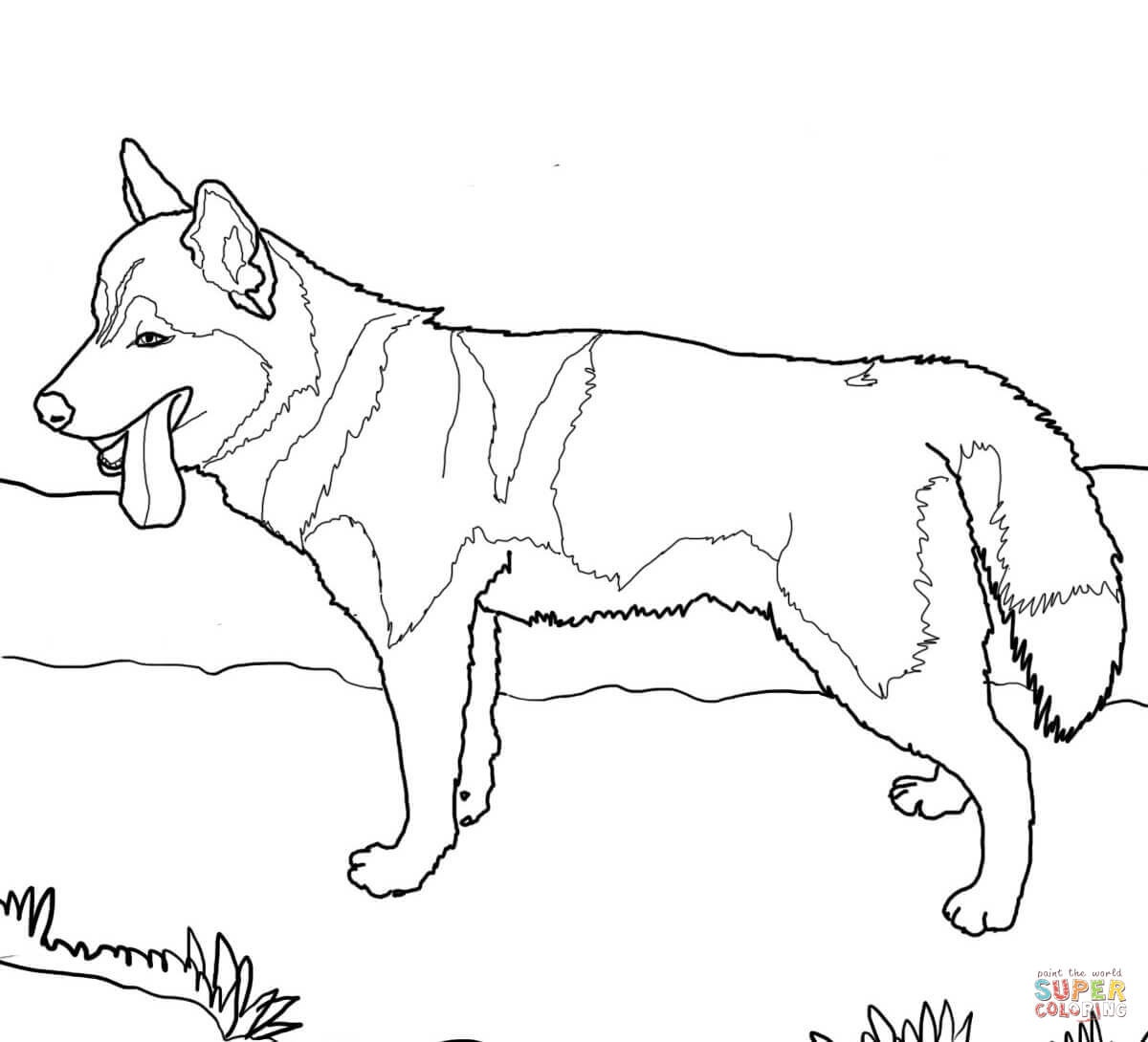 Coloring Pages Of Dogs - K 9 Police Dog Coloring Page Free Printable - Free Printable Dog Coloring Pages