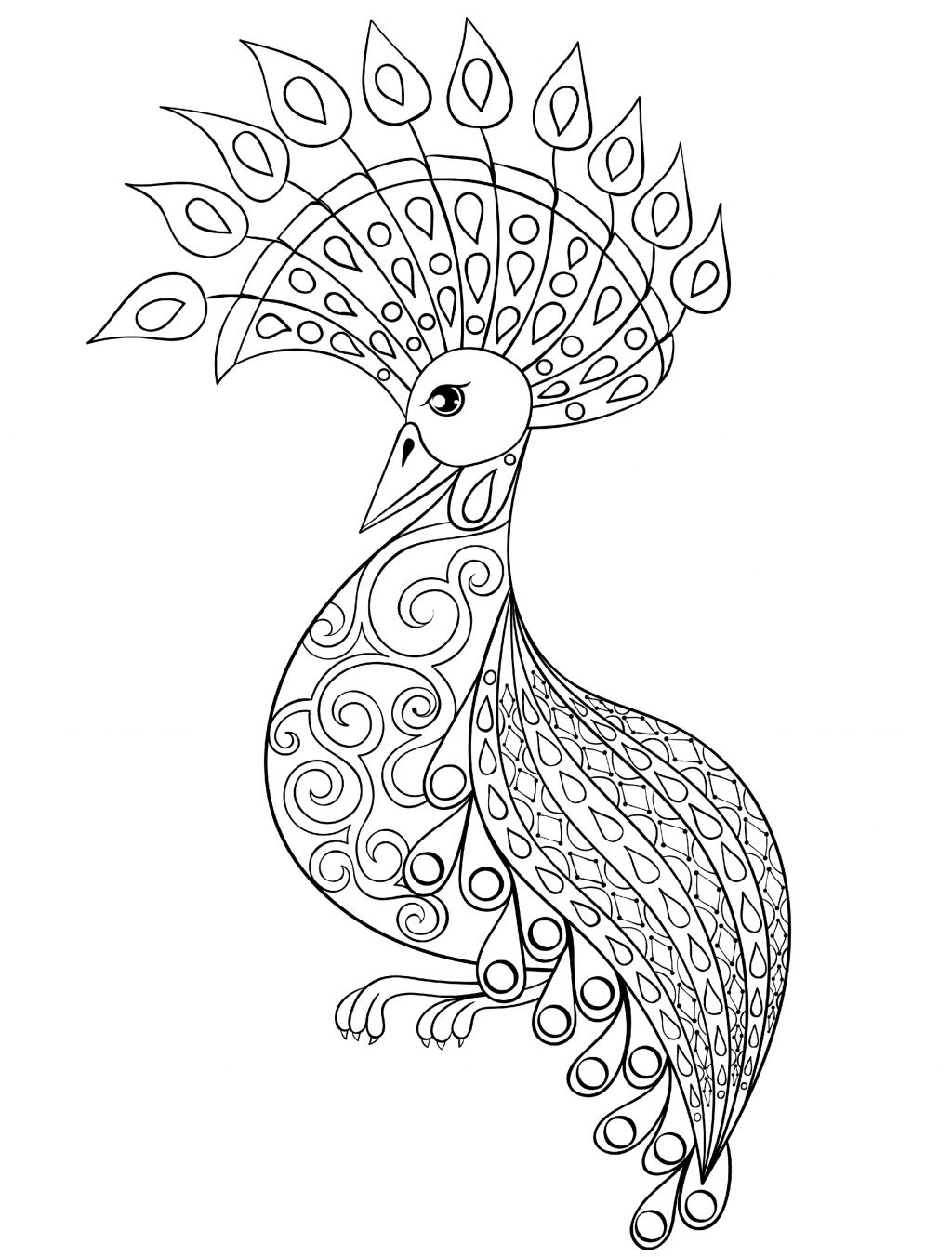 Coloring Pages : Small Adult Coloring Books Incredible Peacock Page - Free Printable Peacock Pictures