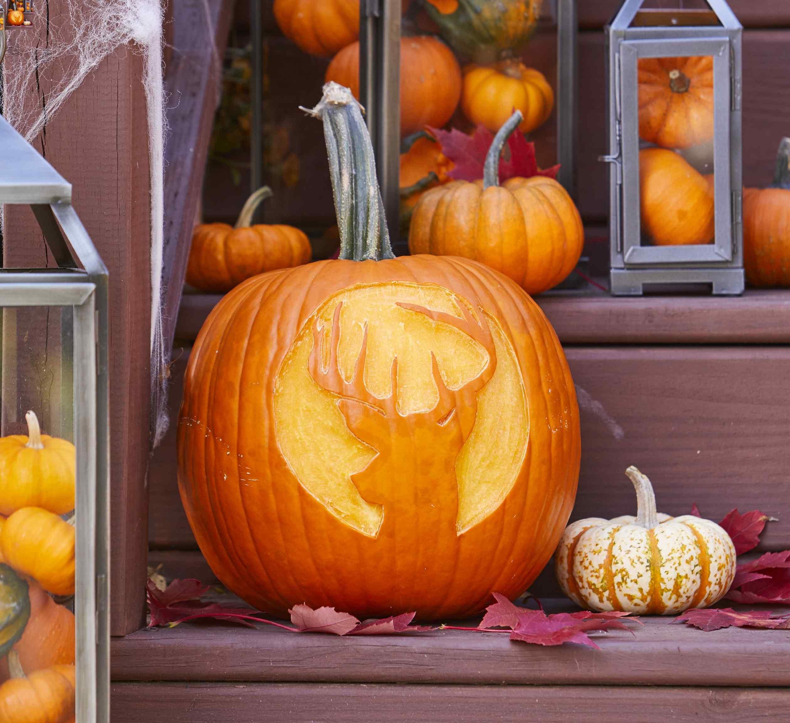 Deer Pumpkin Stencil | Better Homes & Gardens - Free Printable Deer Pumpkin Stencils