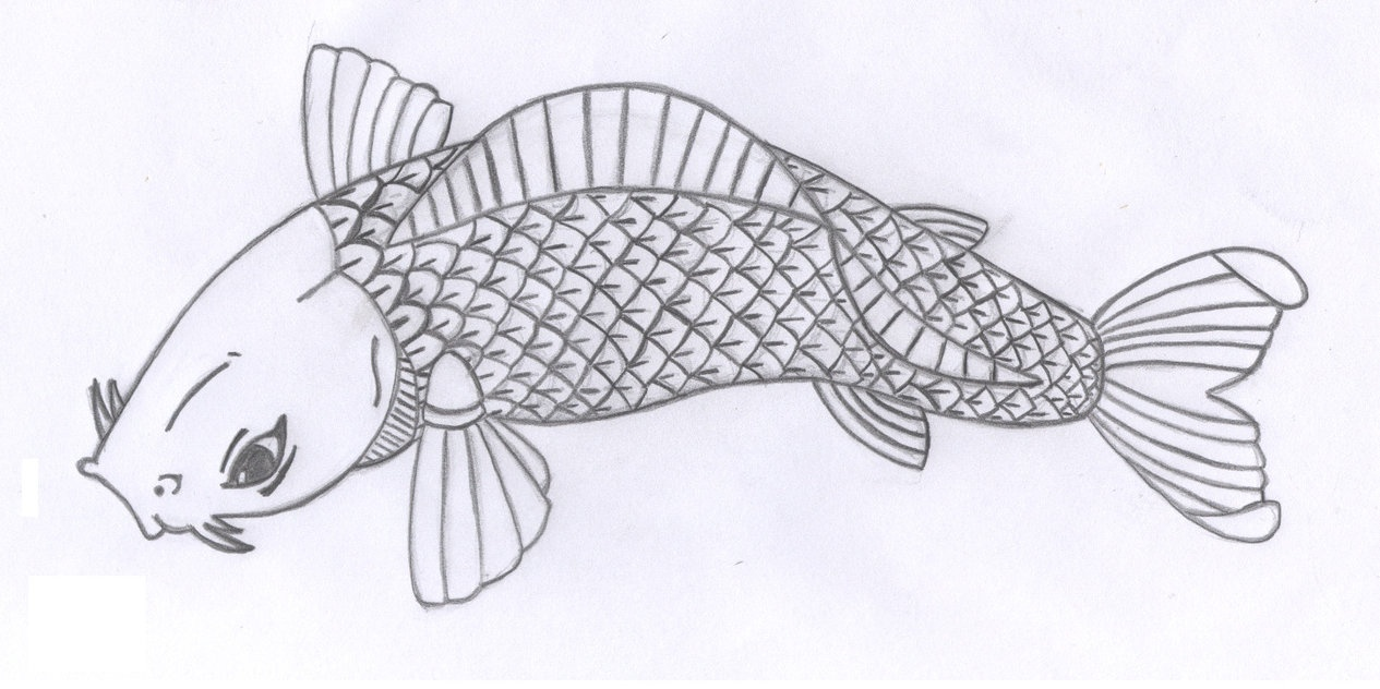 Free Fish Images Drawings, Download Free Clip Art, Free Clip Art On - Free Printable Pencil Drawings