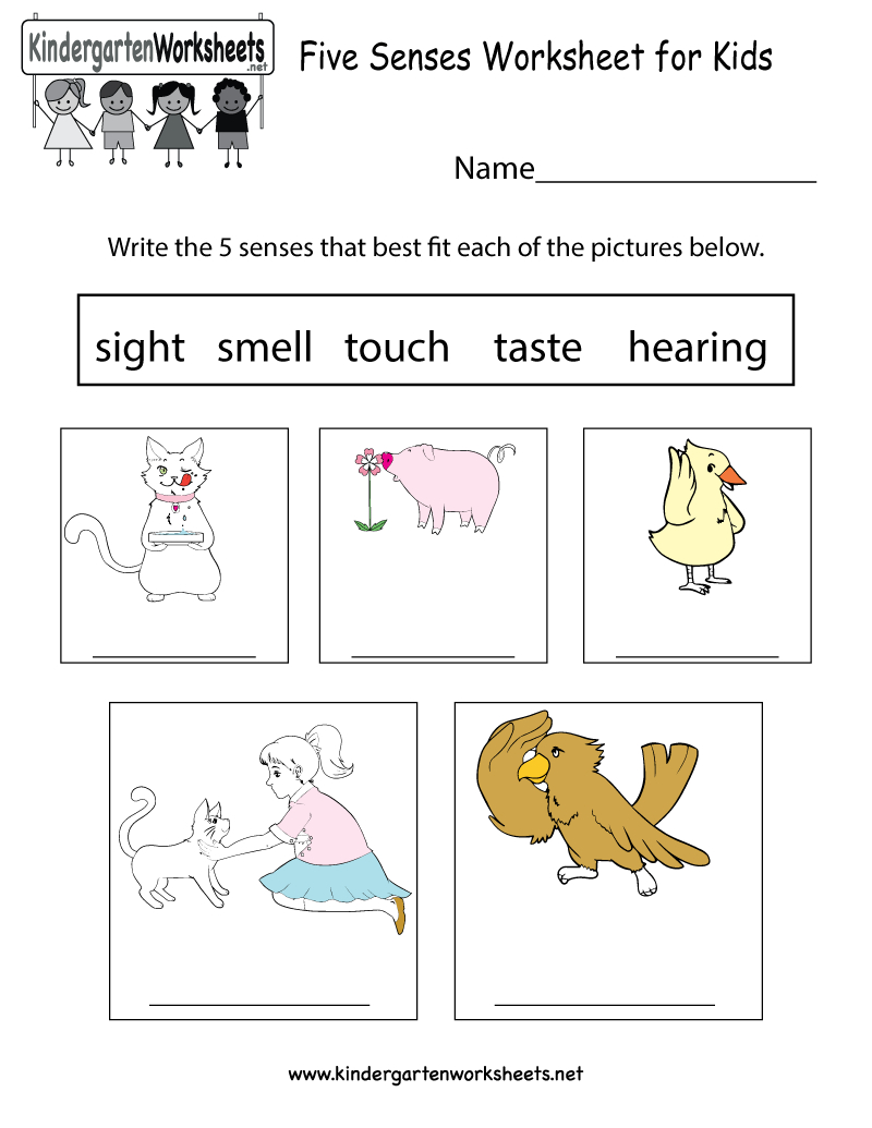 Free Printable Five Senses Worksheet For Kids - Free Printable Worksheets Kindergarten Five Senses