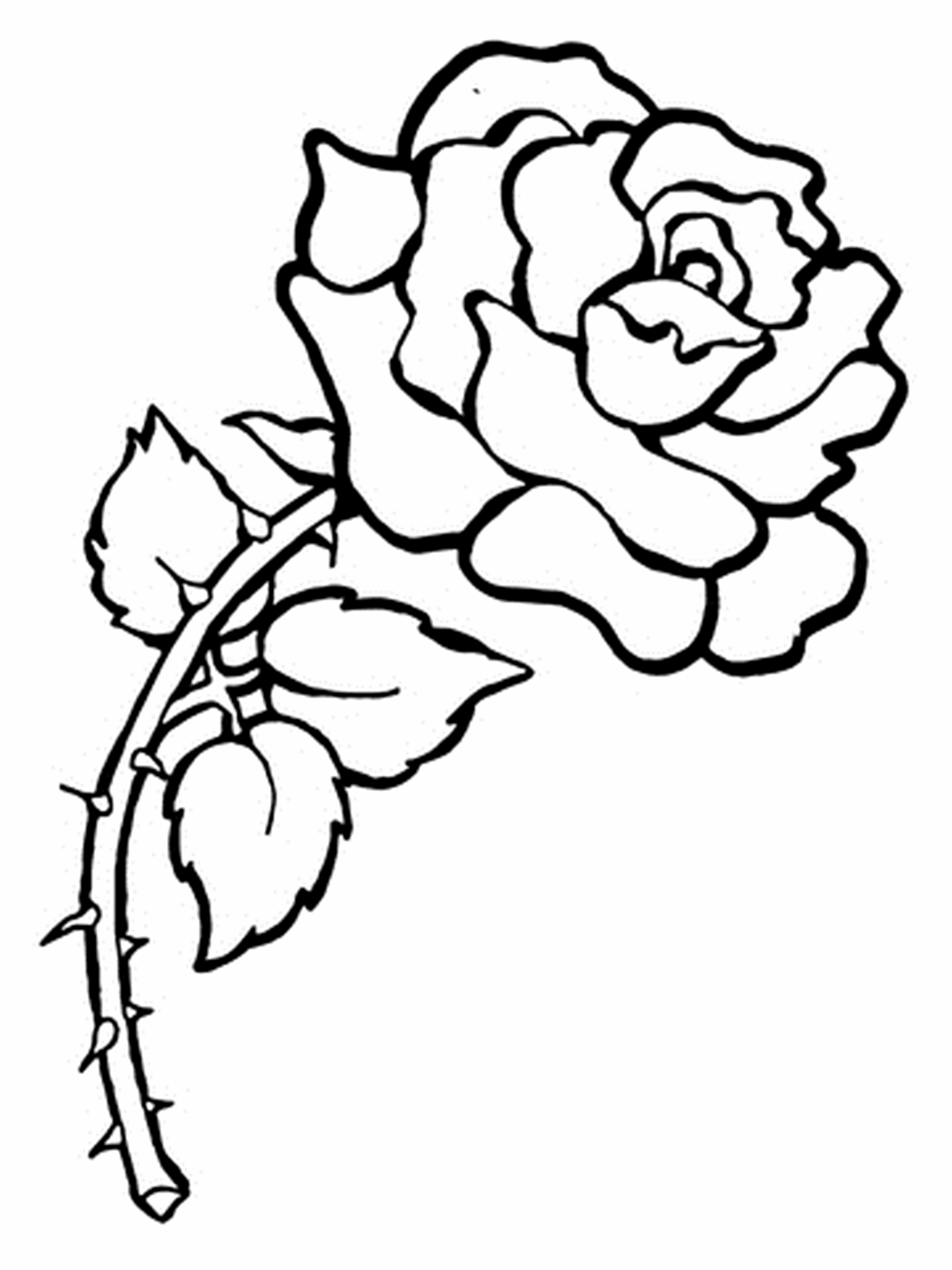Free Printable Flower Coloring Pages For Kids - Best Coloring Pages - Free Printable Flower Coloring Pages