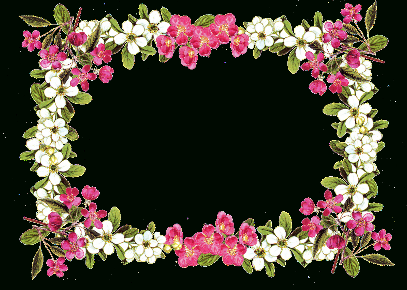 Free Printable Flower Templates Clipart | Free Download Best Free - Free Printable Clip Art Flowers