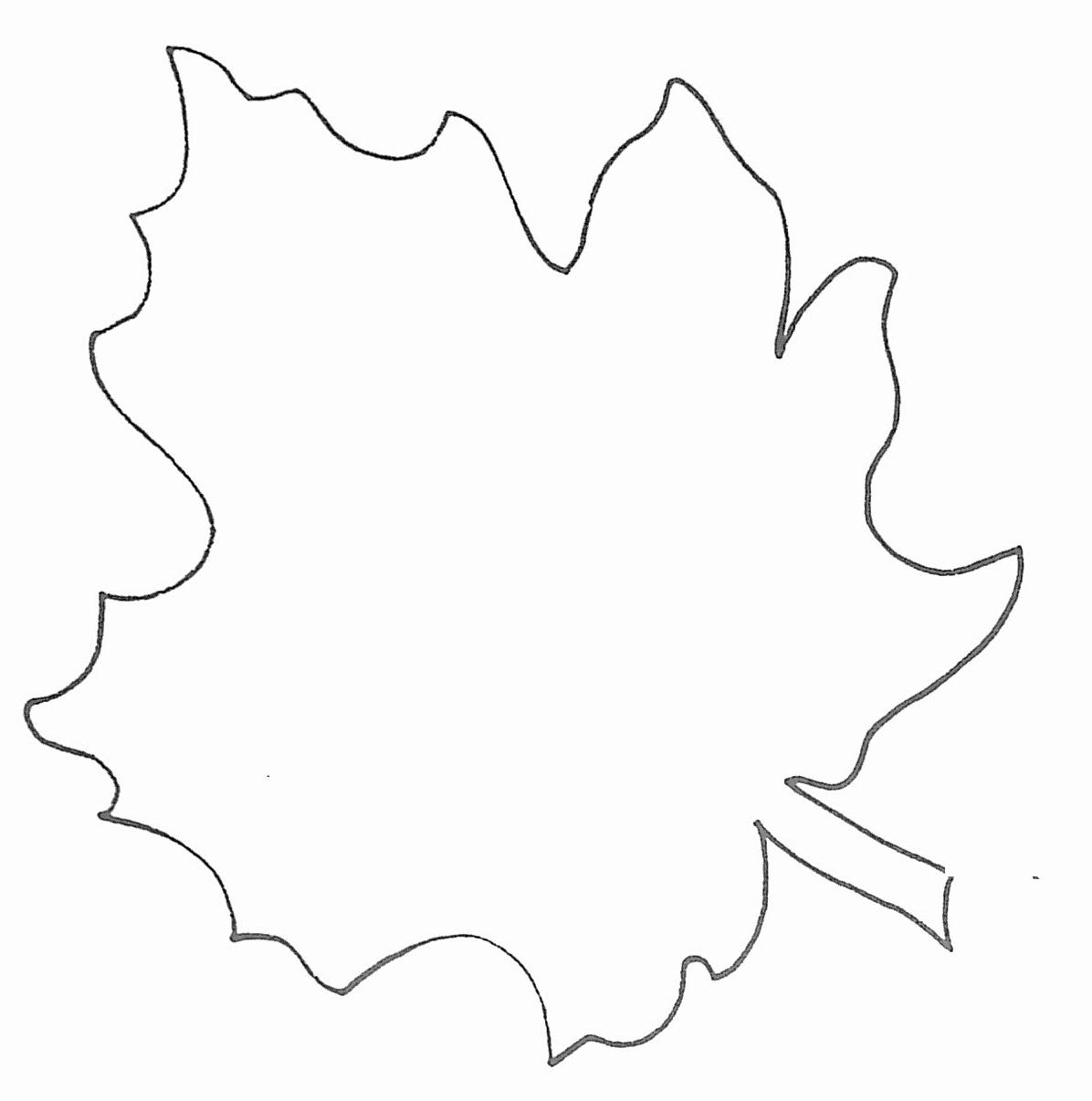 Free Printable Leaf Template   Mathosproject - Free Printable Leaf Template