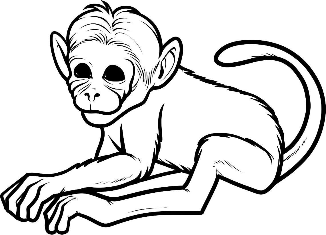 Free Printable Monkey Coloring Pages For Kids | Girl Scouts | Monkey - Free Printable Monkey Coloring Pages