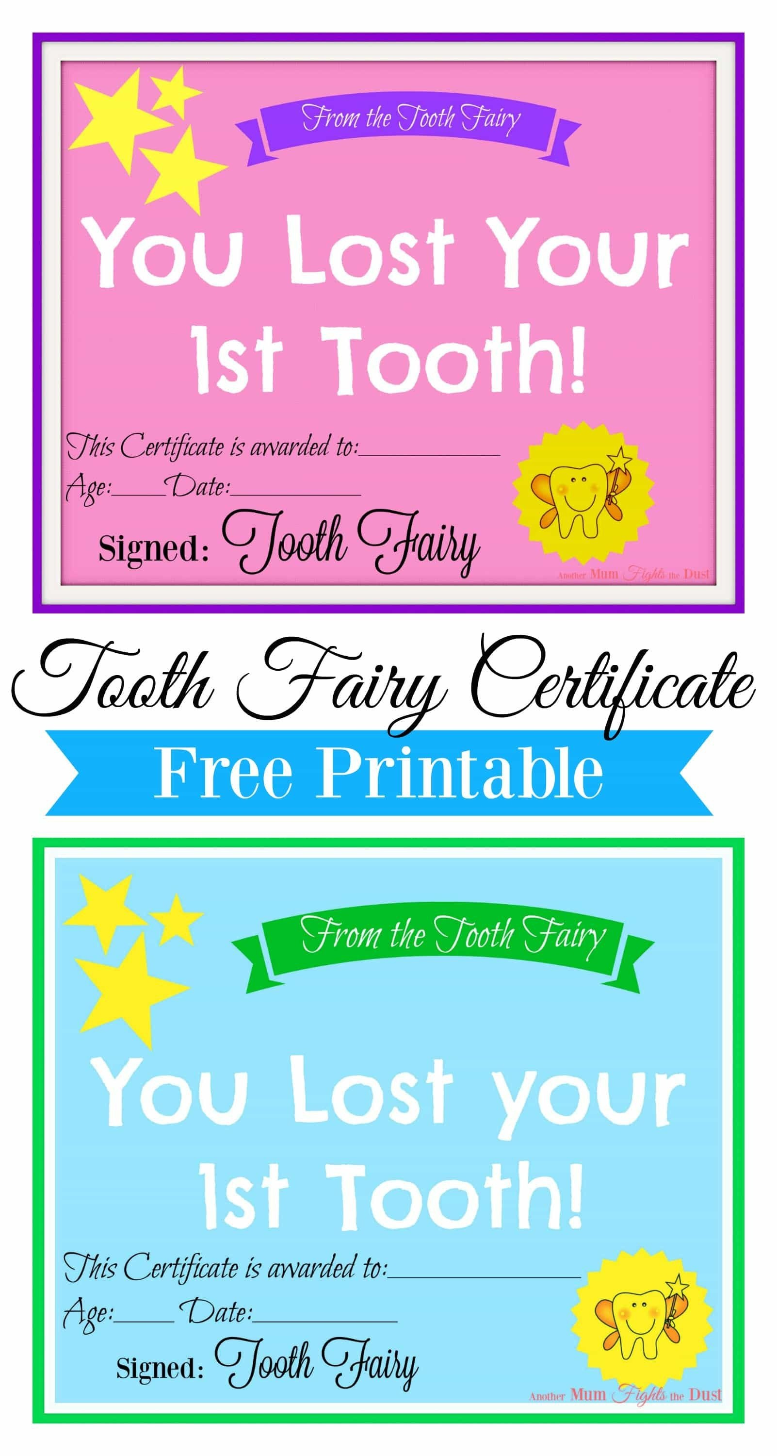 Free Printable Tooth Fairy Certificate   Tooth Fairy Ideas   Tooth - Free Printable Tooth Fairy Pictures