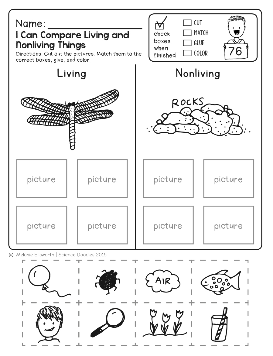 Freebie! No-Prep Kindergarten Science Doodle Printables | T E A C H - Free Printable Science Worksheets