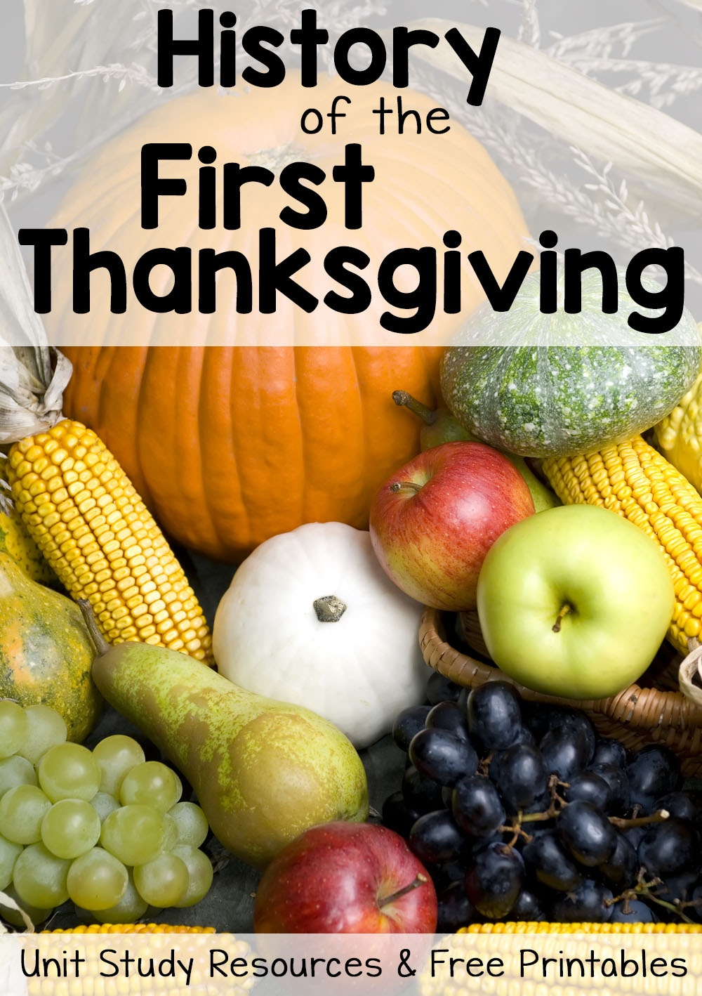 History Of Thanksgiving: Free Printables And Unit Study Resources - Free Printable Thanksgiving Math Worksheets For 3Rd Grade