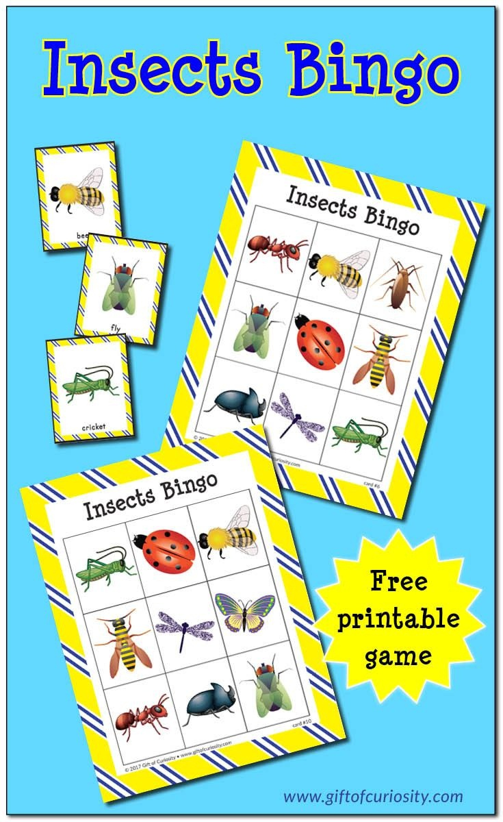Insects Bingo {Free Printable} | Teaching Preschool | Insect - Free Printable Games
