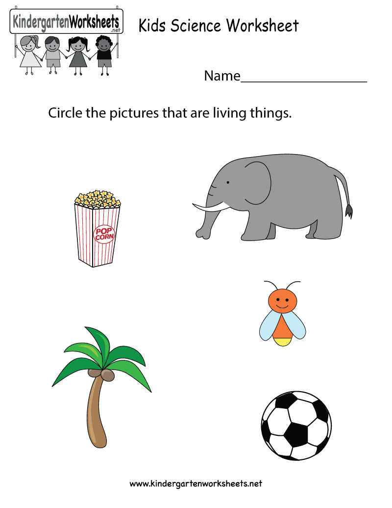 Kindergarten Kids Science Worksheet Printable | Science Worksheets - Free Printable Worksheets For Kids Science