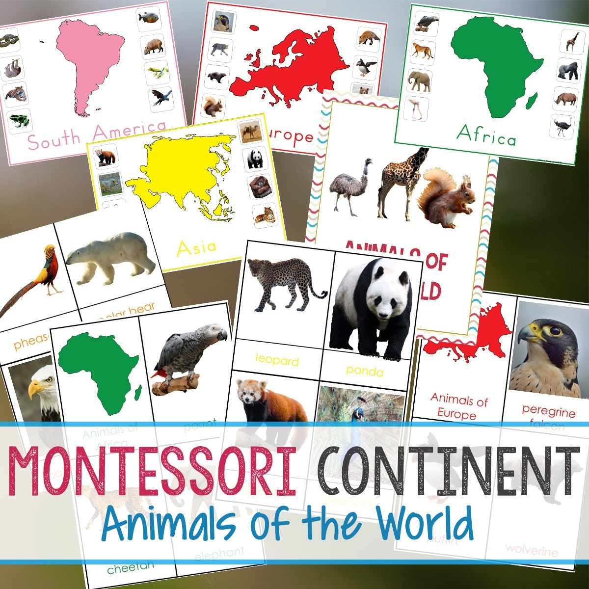 Montessori Animals And Continents Printables And Activities - Free Printable Animal Classification Cards