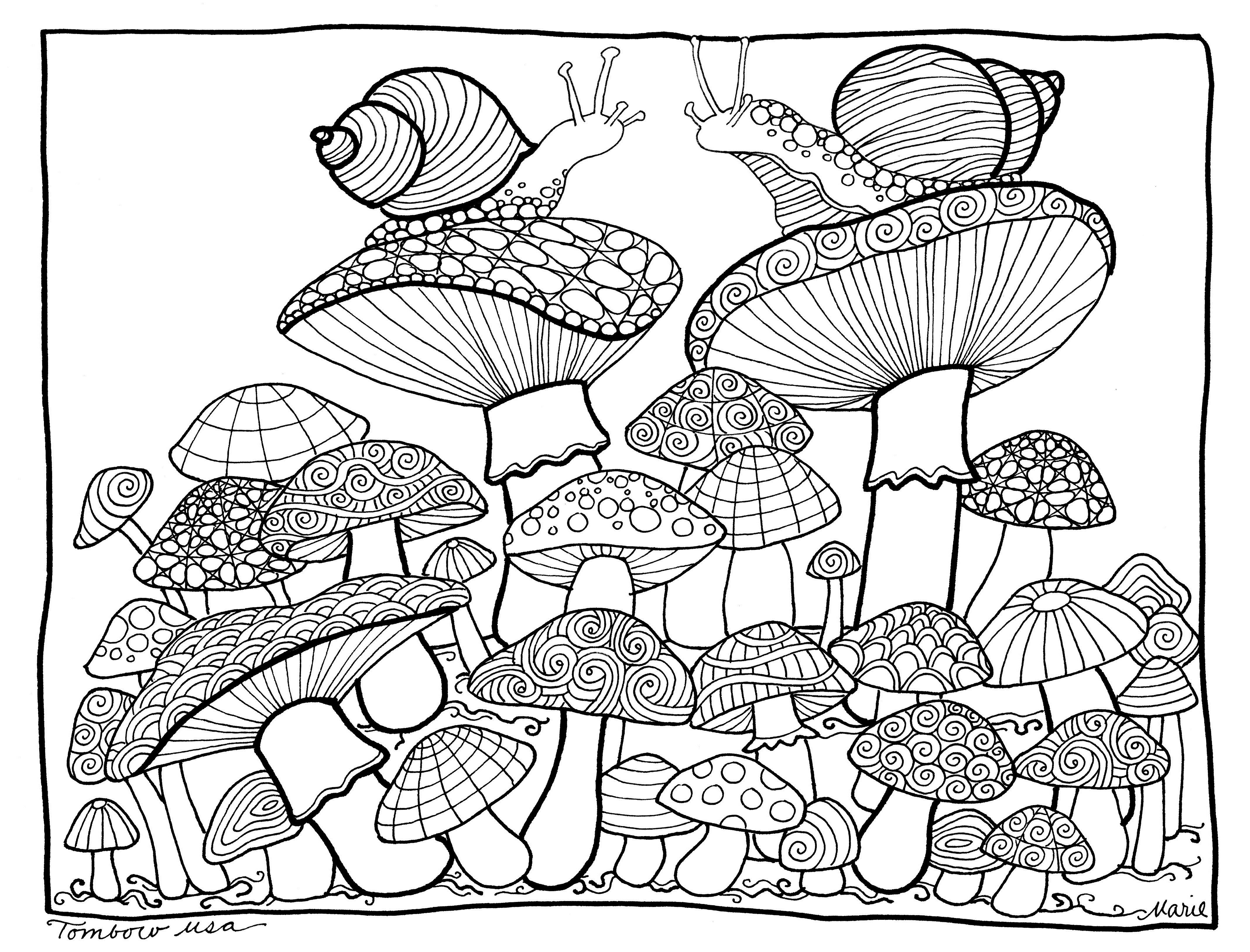 Mushrooms Coloring Pagetombow Usa | Paper | Color, Coloring - Free Printable Mushroom Coloring Pages