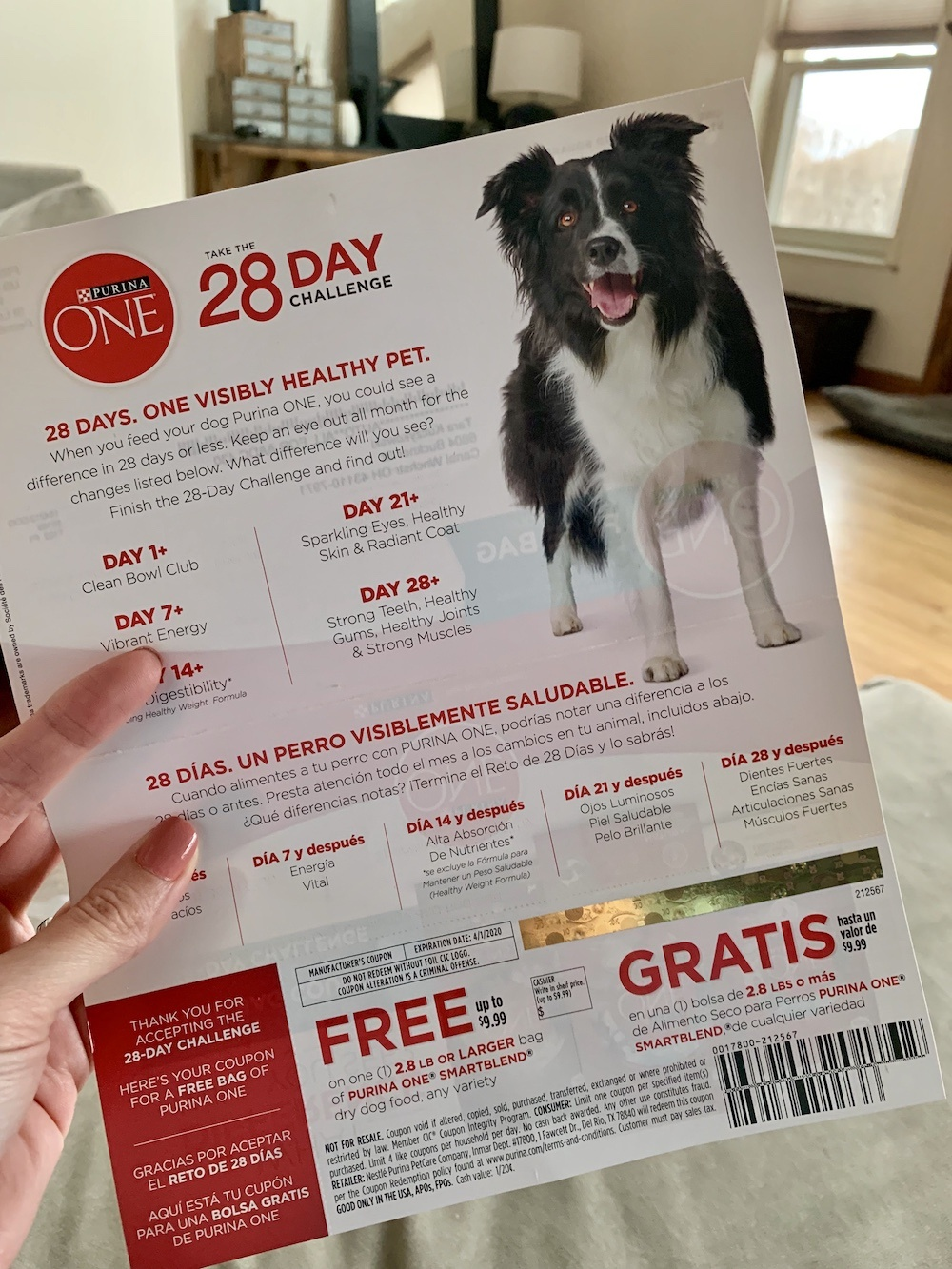 My Free Bag Of Purina One Dog Food Coupon Came Today! - Deal Seeking Mom - Free Printable Dog Food Coupons